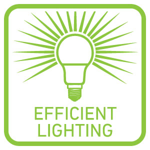 Ellies Efficient Lighting Products